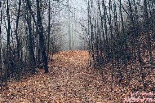 人生が思い通りに進まないのは「魂の道」からズレているというメッセージのアイキャッチ画像